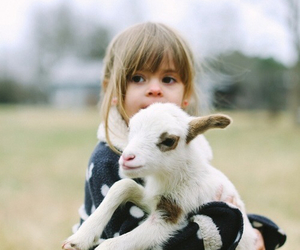 cute, animal, and kids image