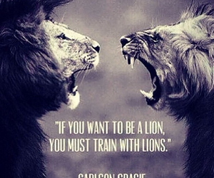 lion, quotes, and train image