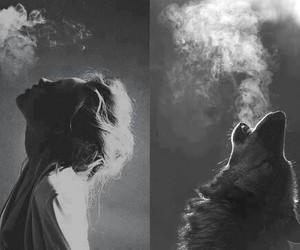 wolf, girl, and smoke image