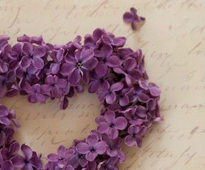 flowers, purple, and heart image