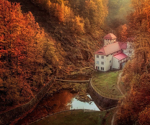 autumn, house, and forest image