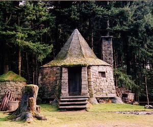 hagrid, harry potter, and hagrid's hut image
