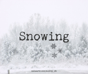 snow, cold, and snowing image