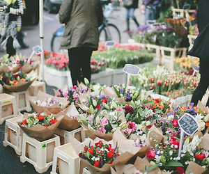 holland and flower market image