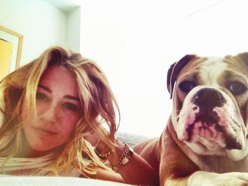 miley cyrus and dog image