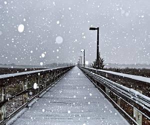 winter, snow, and bridge image