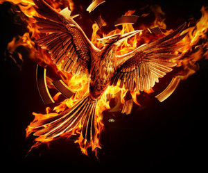 mockingjay, the hunger games, and book image