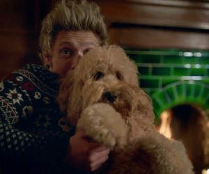 night changes, niall horan, and one direction image
