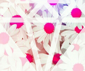 flowers, diamond, and pink image