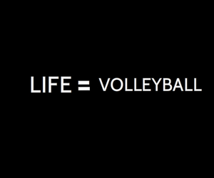 life, love, and volleyball image