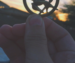 the hunger games, mockingjay, and mockinjay pin image