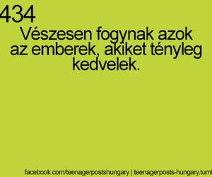 magyar and hungarian image