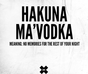 no, night, and vodka image