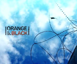 orange is the new black, oitnb, and netflix image