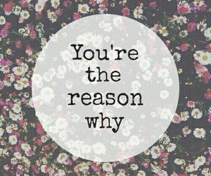 flowers, quote, and reason image