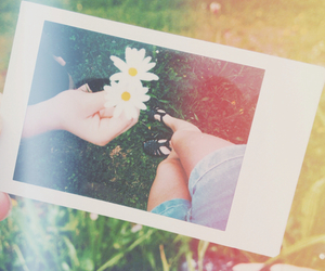 flowers, summer, and hipster image