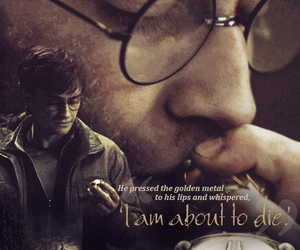 harry potter, daniel radcliffe, and deathly hallows image