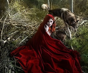 beauty, forest, and red riding hood image