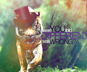 tiger, wrong, and stripes image