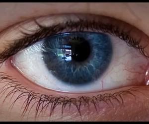 eye blue real lashes image