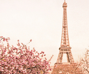 beautiful, eiffel, and flowers image