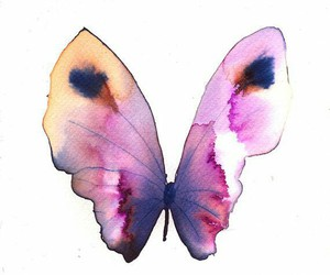 art, butterfly, and beautiful image