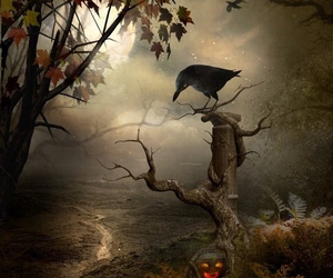crow, Halloween, and horror image
