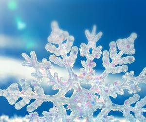 christmas, photography, and snow image