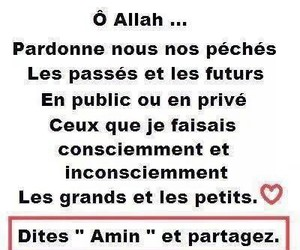 allah, islam, and paradis image