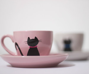 cat, coffee, and cup image
