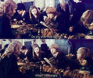 harry potter, hungry, and ron weasley image