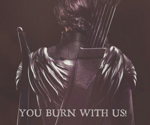 rebellion, revolution, and the hunger games image
