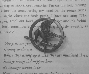 book, reading, and the hanging tree image