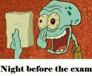 exam, funny, and night image