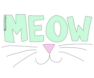 cat, overlay, and meow image