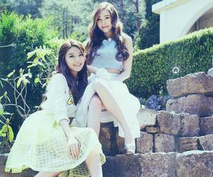 jessica, sooyoung, and sicachu image