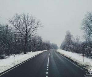 amazing, christmas, and road image