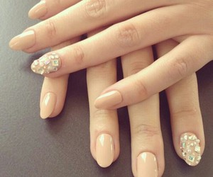 beige, nails, and rose image