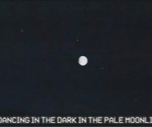 pale, grunge, and lana del rey image