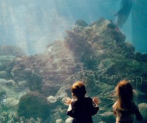 kids, aquarium, and children image