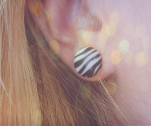 ear and zebra image