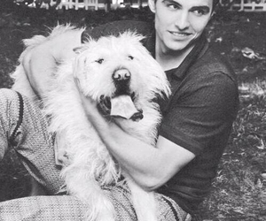 dog, dave franco, and love image