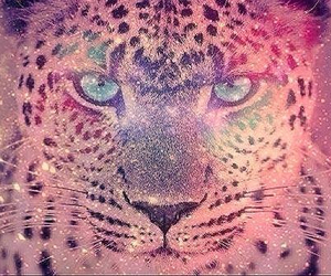 galaxy, leopard, and pink image