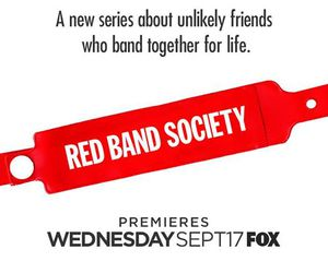 fox, hospital, and red band society image