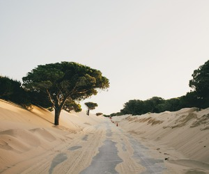 nature, sand, and photography image