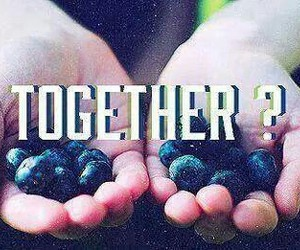 together, hunger games, and the hunger games image