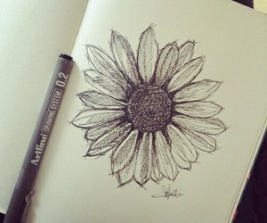 drawing, flower, and tattoo image