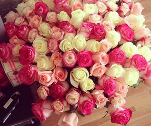 gift, roses, and pink roses image