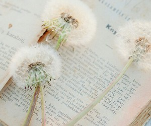 book, dandelion, and flowers image
