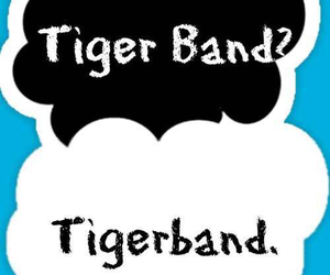 band, band geek, and tigerband image